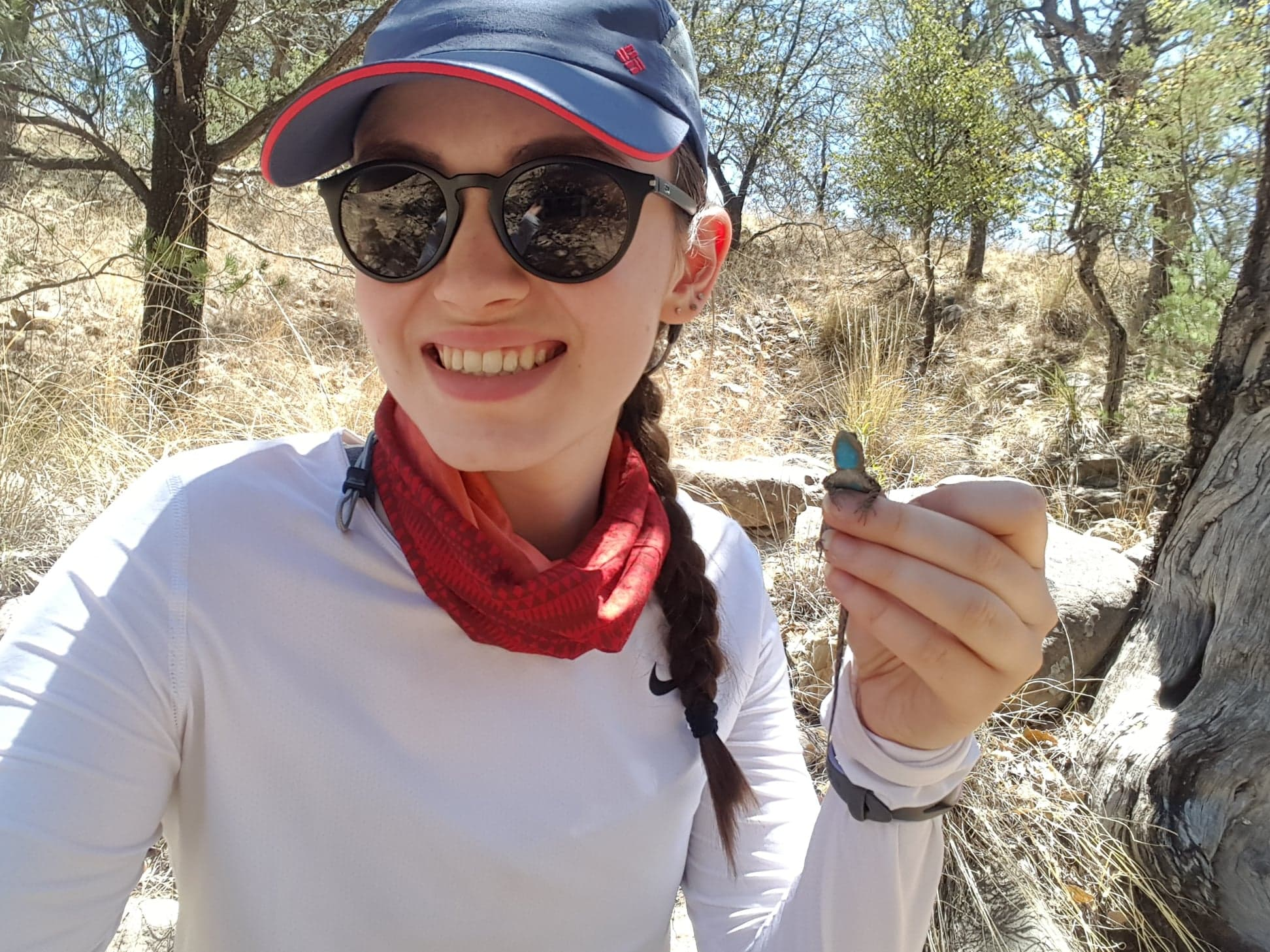 Herpetology research in the Southwestern United-States